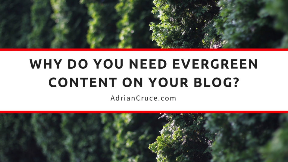 why do you need evergreen content on your blog